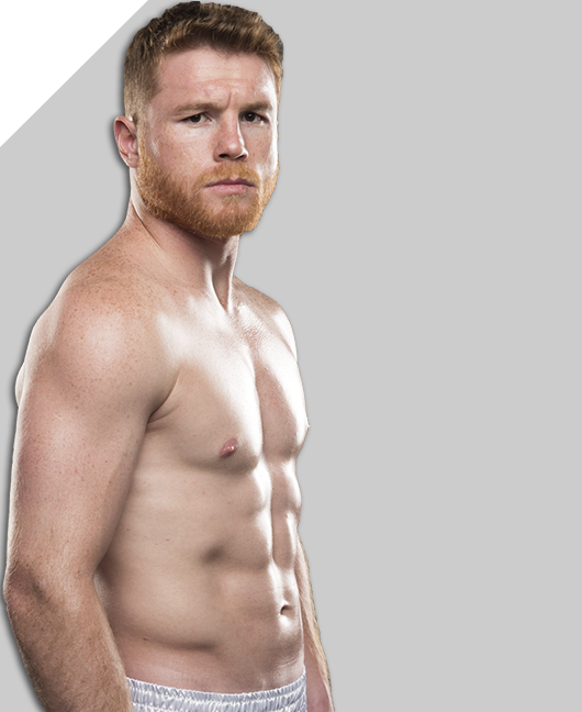 Canelo's plan: Yildirim in Feb., bigger fight in May